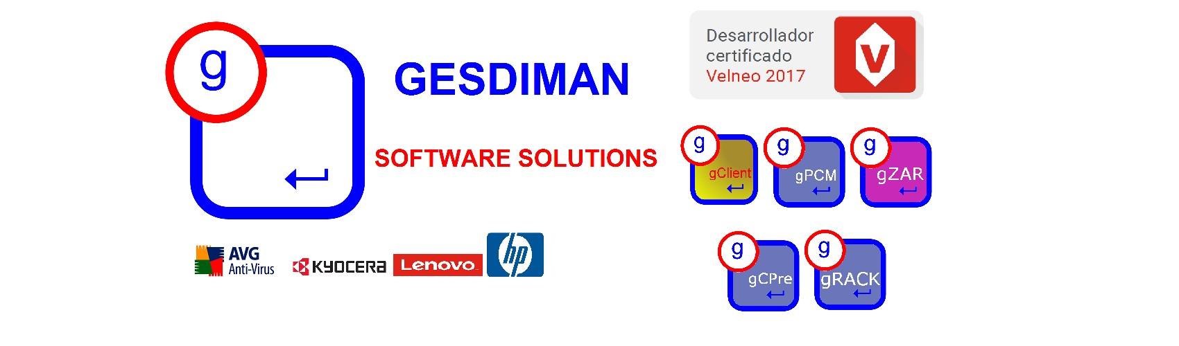 SOFTWARE PROFESIONAL